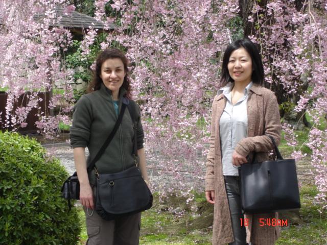 Japon avril 2006 592